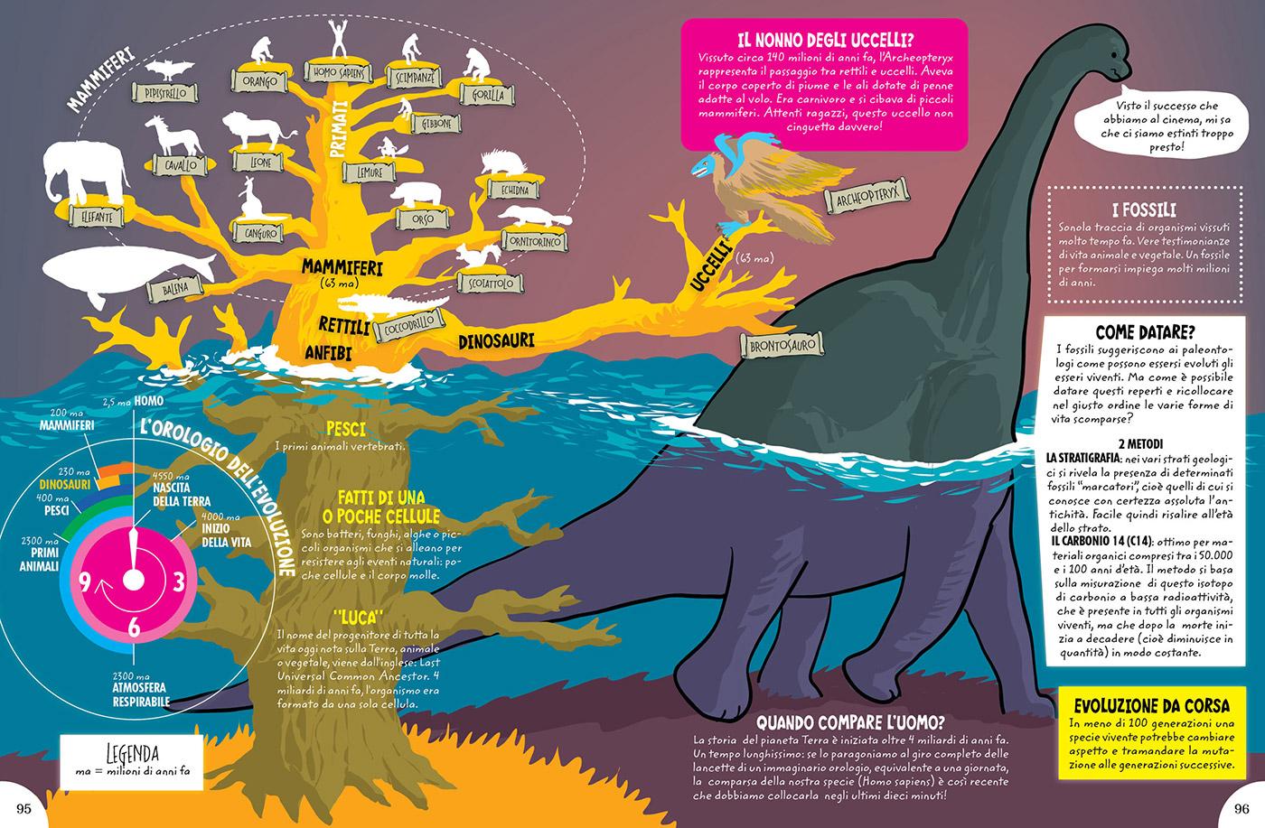 albero dell'evoluzione